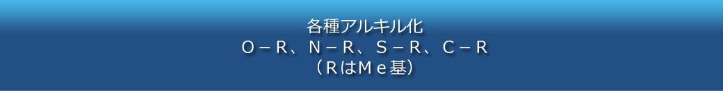 各種アルキル化 O-R、N-R、S-R、C-R (RはMe基)